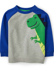 Boys Embroidered T-Rex Sweatshirt - Dino Dude