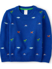 Boys Embroidered Sweater - Dino Dude