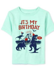 Baby And Toddler Boys Birthday Dino Graphic Tee