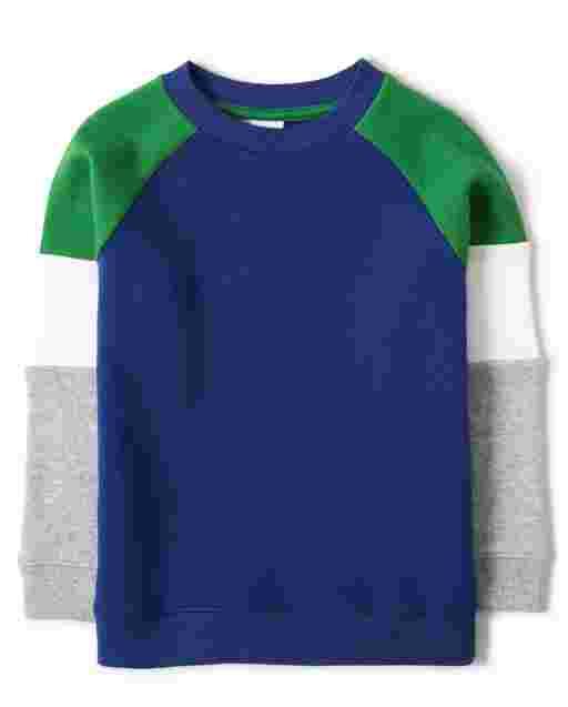 Boys Long Sleeve Fleece Colorblock Sweatshirt - Dino Roar