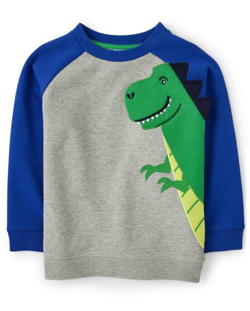 Boys Long Raglan Sleeve Embroidered T-Rex Sweatshirt - Dino Dude