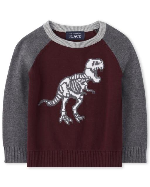 Baby And Toddler Boys Long Raglan Sleeve Dino Skeleton Sweater