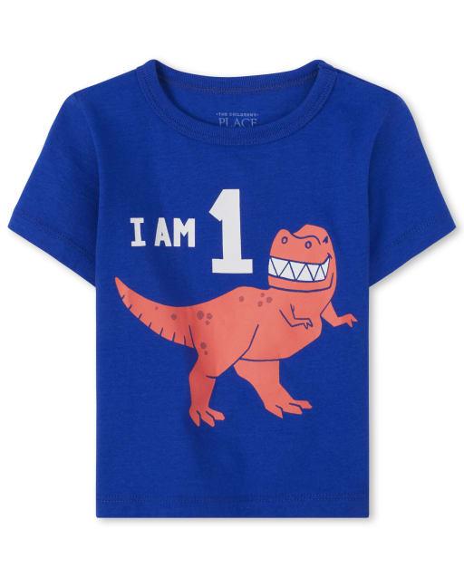 Toddler Boys Birthday Short Sleeve 'I Am 1' Dino Graphic Tee