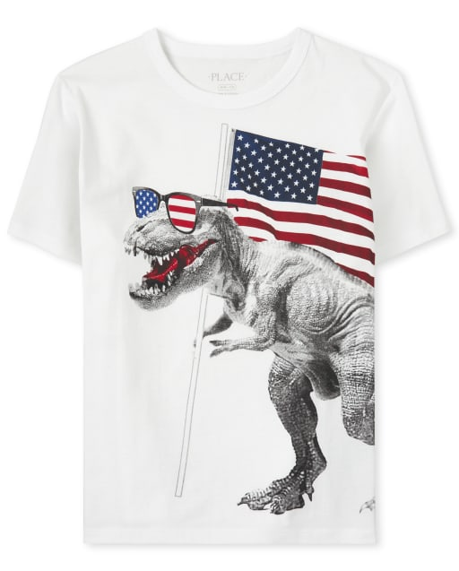 Boys Americana Short Sleeve Dino And Flag Graphic Tee