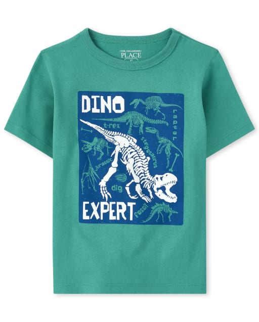 Baby And Toddler Boys Short Sleeve 'Dino Expert' Graphic Tee