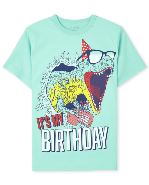 Boys Short Sleeve 'It's My Birthday' Dino Graphic Tee