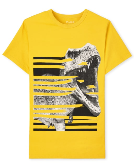 Boys Short Sleeve Dinosaur Graphic Tee
