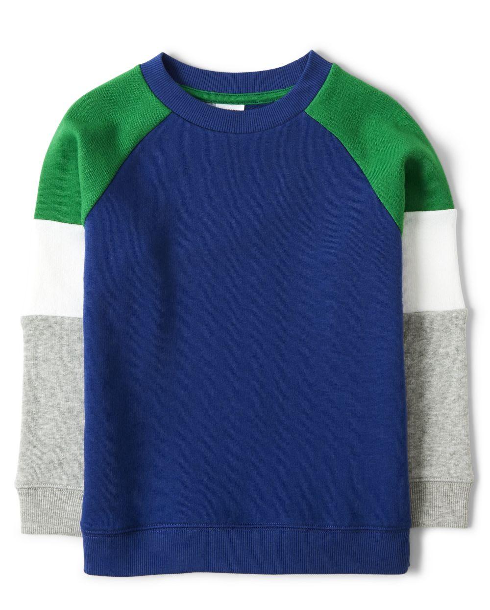 Boys Colorblock Sweatshirt - Dino Roar