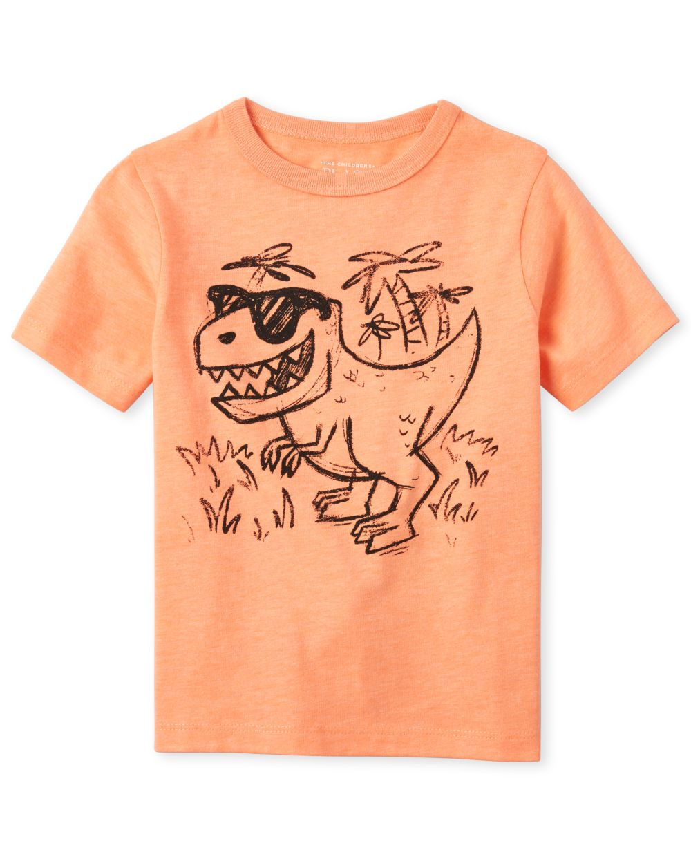 Baby And Toddler Boys Dino Graphic Tee