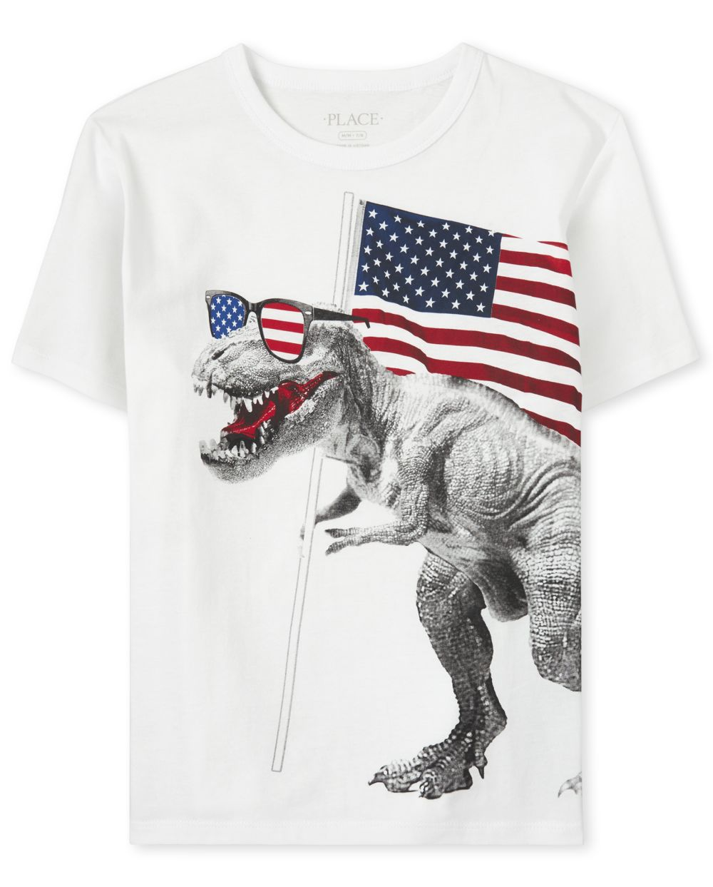 Boys Americana Dino Flag Graphic Tee